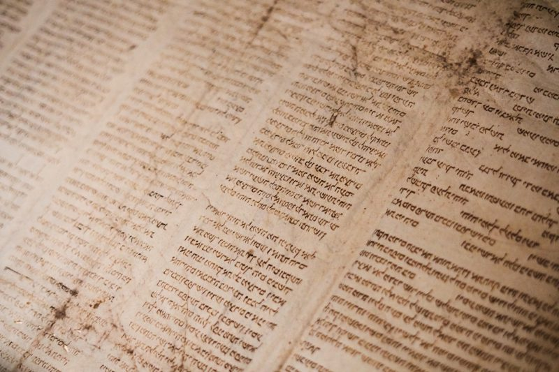 Bible in another language