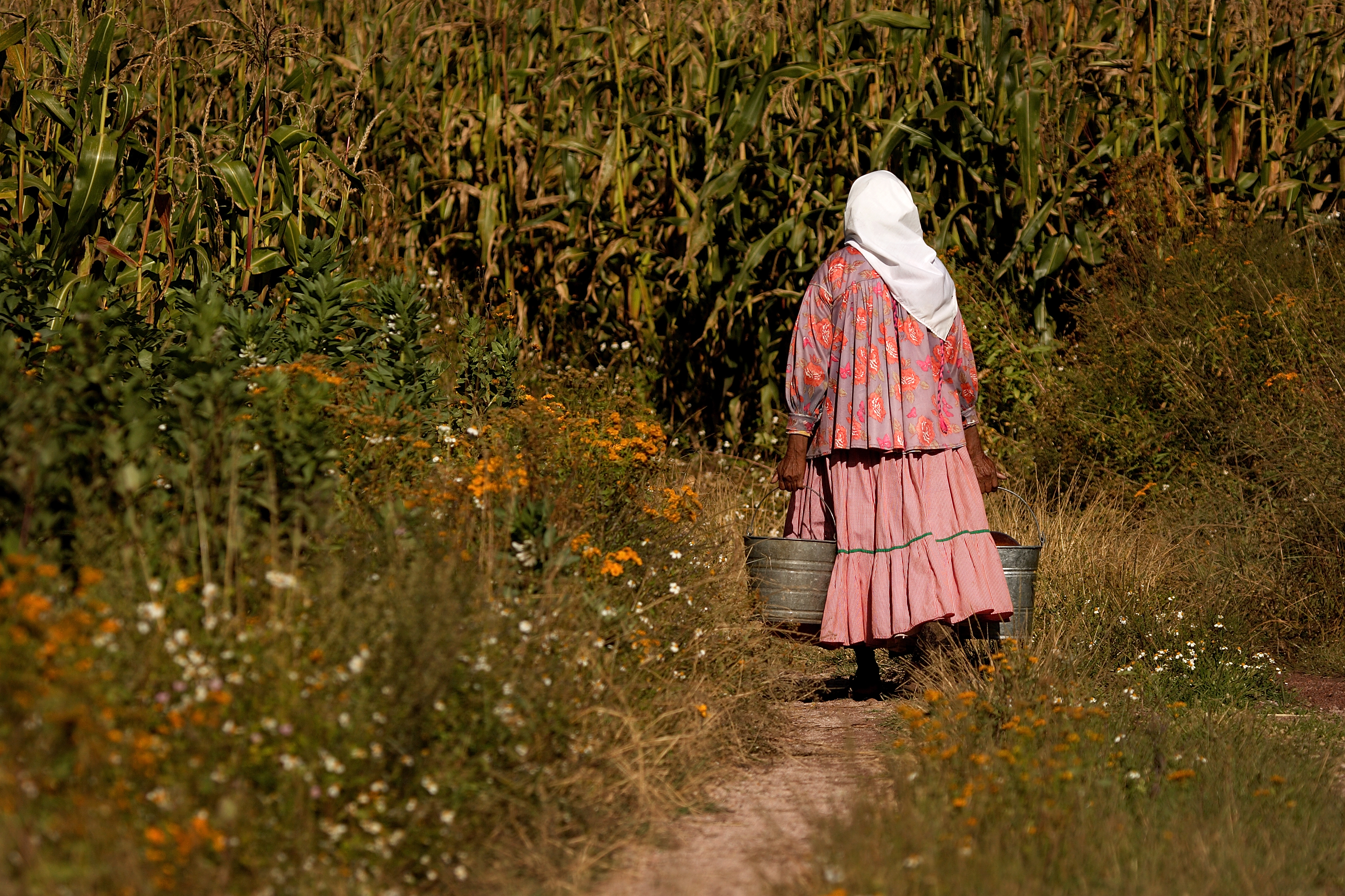 Lady Carrying Pails in Field