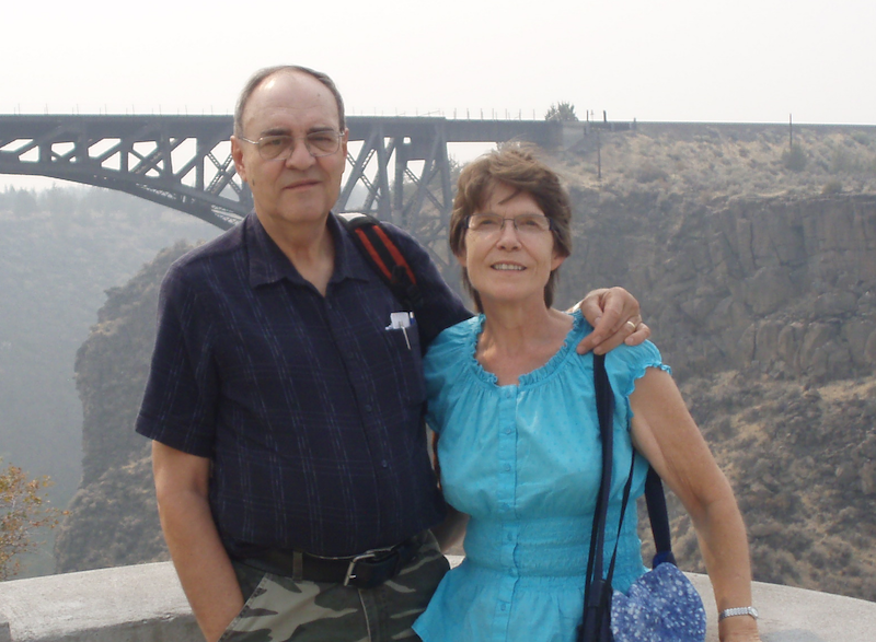 a man and woman standing at a lookout with a bridge in the background