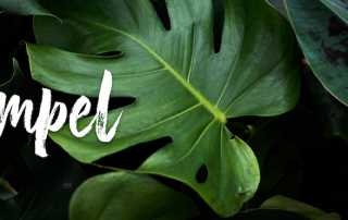 Compel logo over a green leafy banner