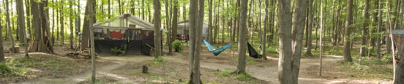 hammocks hung between the trees in Jungle Camp